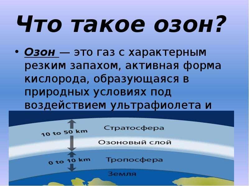 В Петербурге нашли места с опасным количеством токсичного газа